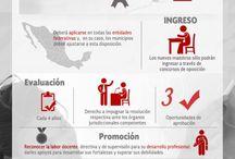 Infografías / Infografías sobre educación 2013
