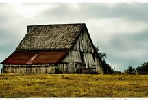 That Old Barn  / by Sydney Alexis