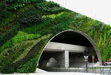Verticale tuinen/groene daken