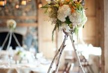 Inspired by Nature / Why not add a spruce of nature into your event?