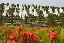 Gardens Around The World / Curation of beautiful or famous gardens around the world