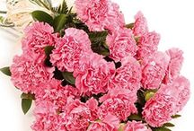 Florist In Kolkata - FlowerAura / Looking for flowers delivery in Kolkata?Look no further for FA enables you to send flowers,online,through the best florists in town!.. http://www.floweraura.com/sendflowers/kolkata