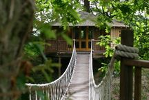 Adventure / A treehouse in the woodlands of Devon, beautiful walks through the North Wales countryside, miscellaneous features that can't be explained  - Adventure comes in many forms