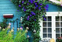 Decor/Cottage  / by Penny Landfried