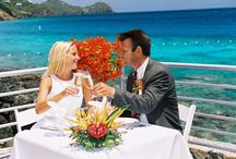 Coral World Weddings / Whether you are looking for a spot to tie the knot or a place to celebrate, Coral World Ocean Park is the perfect setting for your special day.   http://coralworldvi.com/wedding
