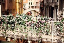 Italy / by Sabrina Swann-Warren