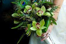 Annika Wedding 25/Feb/17