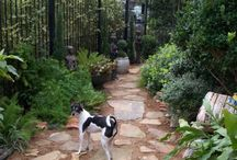 Dog Friendly Gardens