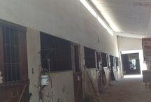 Instalaciones para equinos / FOTOGRAFIAS DE DIFERENTES ESTABLECIMIENTOS PARA EQUINOS DE ARGENTINA BOXES Y PABELLONES