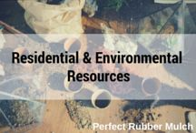Resources for Garden, Landscape, and Recycling / Need some know-hows for your home and its surroundings? Read up on some of our fun and shareable resources!