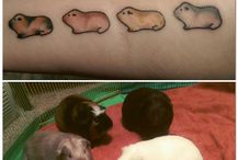 Guinea Pig Tat Ideas