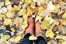 Autumn - my photos