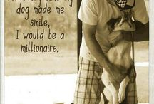 For the Love of Dogs!!!