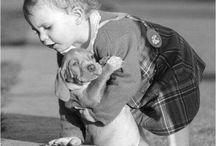kids&pets
