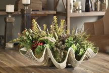 Botanicals & Floral Arrangements