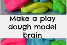 Brain Inquiry