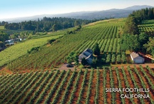Sierra Foothills and Winery life styles / Travel tasting and enjoying the Wines and Vineyards of the Sierra Foothills.