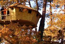 Les cabanes perchées de Dihan / Découvrez nos #cabanes perchées en pleine #nature pour un séjour inoubliable en amoureux ou en famille ! #Dihan #Carnac #Quiberon