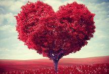 hearts ♡
