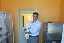 Helping Pets and People Find Homes!