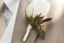 Weddingwish board/Nounou ´s Wedding
