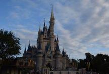 Disney World / by Stephanie Dion Philbin