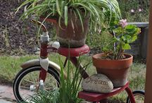 GARDENING IDEAS / by Leslie Spano