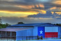 Lone Star State