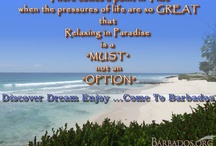 Vacation Bliss in Barbados / Escape to warm Caribbean shores; discover a place that is distinctively charming; explore and connect; be invigorated by a lifestyle unlike any other; visit Barbados.