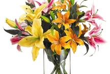 Floral arrangements / by Mirel Gottesman