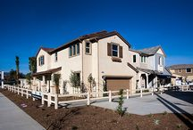 Agave / Agave by Williams Homes. New homes in Winneka, CA