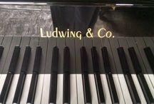 Piano Ludwig   http://pianosgradimi.mx/producto/piano-cola-ludwig-pianoforte/#