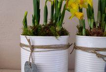 Blumenideen für den Tisch