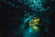 Újzéland