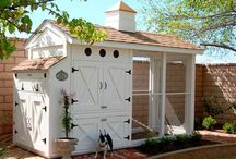 I. Want a chicken coop