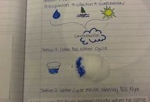 Gr. 2 Science and SS