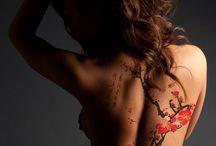 Hot Bodies Series / by Anne Rainey