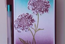 Field Flowers Stampin Up