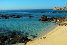 Blue Flag  Certification: Chileno Bay / This was the fisrt beach of Cabo to receive this distinguished certification, with love to the world: Chileno Bay!