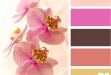 Colour palettes / Matching tones