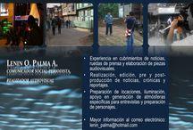 Profesional PALO / Realización Audiovisual