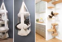 small space creation for cats