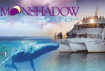 Moonshadow TCQ / Your ultimate Port Stephens cruise experience... with Port Stephens number one cruise company! With multiple cruise departures every day, specialising in Dolphin Watching, Whale Watching, Dinner Cruises, Broughton Island Cruises, Christmas Parties, Birthday Parties, Weddings & Private Charters our friendly crew are dedicated to providing you with a comfortable and memorable cruise.  http://www.portstephens.org.au/see-and-do/tours/port-stephens/moonshadow-tqc-cruises