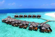 Vakantie Resort