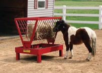ABC's of Miniature Horses / ABC's  of Miniature Horses--About, Breeding, and Care