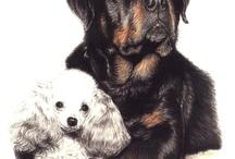 Lovely Doggies