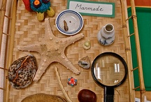 Montessori activities for Preschoolers. / by Montessori Nature