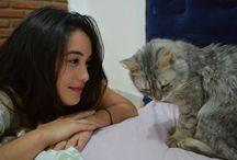 Animal / Amor a los animalitos <3