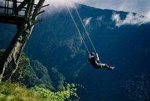 Swings / The most amazing swings!