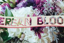 Herban Bloom | The Store